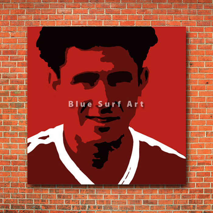 Albiston - red bricks wall
