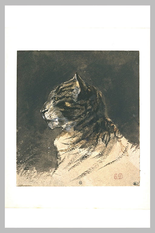 Cat head by Eugène Delacroix Reproduction Painting by Blue Surf Art