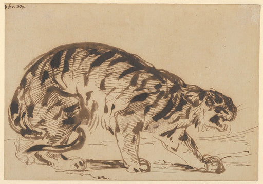 Crouching Tiger by Eugène Delacroix Reproduction Painting by Blue Surf Art