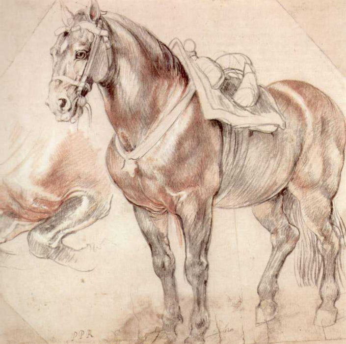 Etude of horse by Peter Paul Rubens Reproduction Oil Painting on Canvas