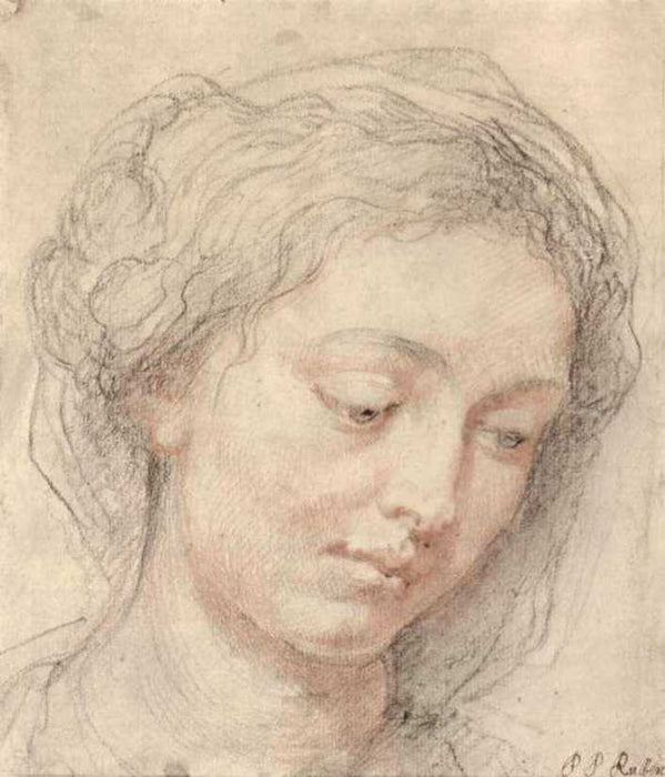 Head of woman by Peter Paul Rubens Reproduction Oil Painting on Canvas