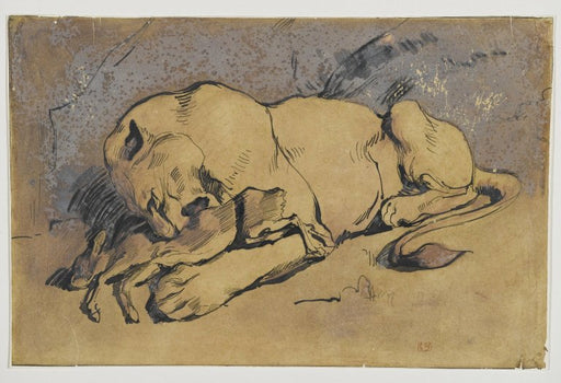 Lioness devouring a Rabbit by Eugène Delacroix Reproduction Painting by Blue Surf Art