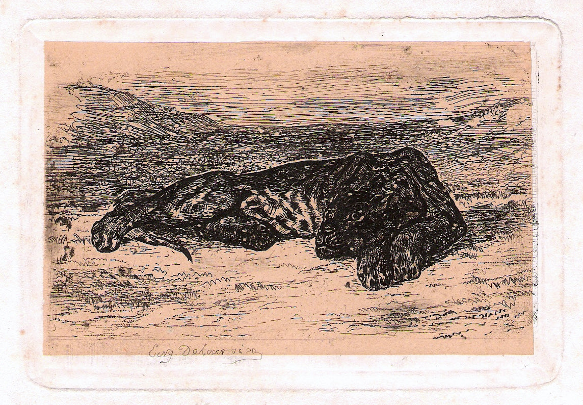 Panther by Eugène Delacroix Reproduction Painting by Blue Surf Art