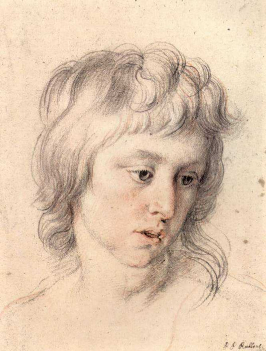 Portrait of boy by Peter Paul Rubens Reproduction Oil Painting on Canvas