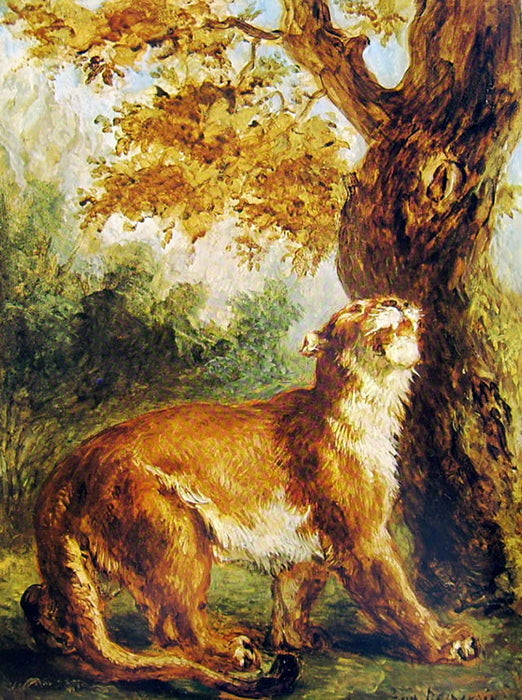 Puma (Lioness watching prey) by Eugène Delacroix Reproduction Painting by Blue Surf Art