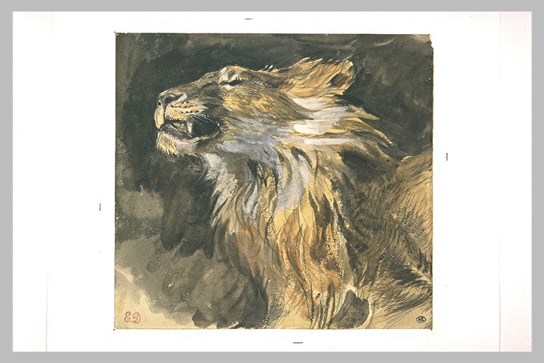 Roaring lion's head by Eugène Delacroix Reproduction Painting by Blue Surf Art