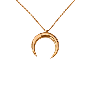 LUCKY DOUBLE HORN NECKLACE