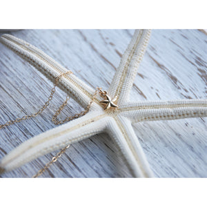 KUILIMA STARFISH NECKLACE