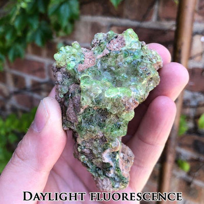 Hyalite Opal from Zacatecas Mexico