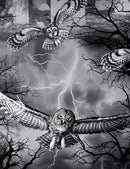 Wicked -Night (Owls  in the Graveyard)