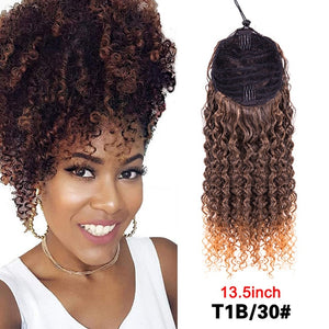 Curly and Sophisticated 2 in 1 Ponytail Hair Extension - Wrap Around Drawstring with clip for updo's