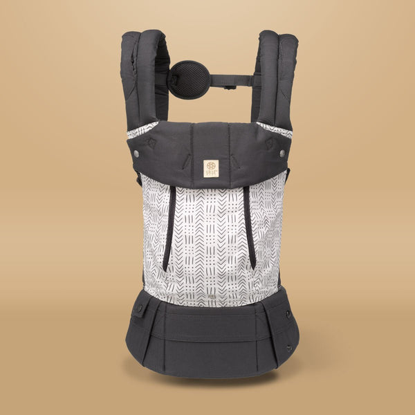 CarryOn AirFlow | Toddler & Child Carrier up to 60 lbs