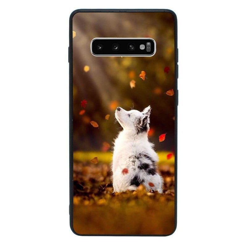 Glass Case Phone Cover for Samsung Galaxy S10 / Dogs I-Choose Ltd