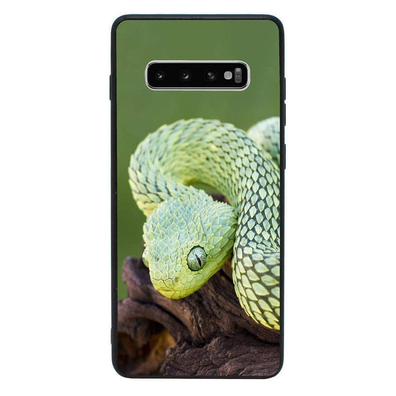 Glass Case Phone Cover for Samsung Galaxy S10 Plus / Reptile I-Choose Ltd