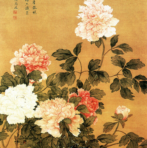 Peony in Chinese Culture