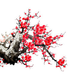 Plum Blossom in Chinese Culture