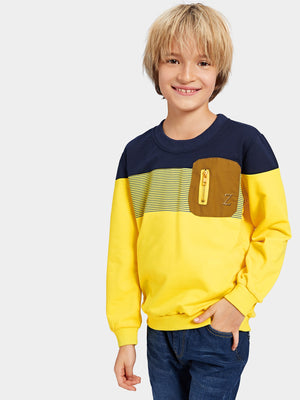 Toddler Boy Sweatshirt - Zip Decoration Cut And Sew Panel Sweatshirt