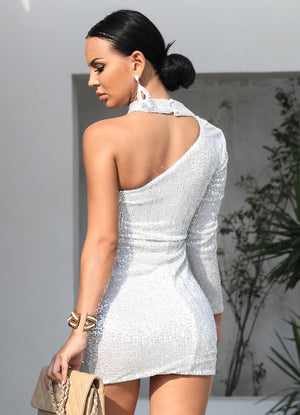 Women Silver Sequin Party Dress