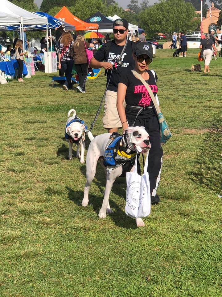 Attendees at DogFest Walk 'n Roll