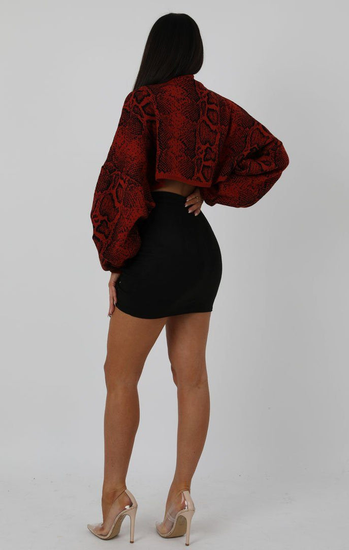 Rust Animal Snake Print Long Sleeve Crop Jumper - Sienna