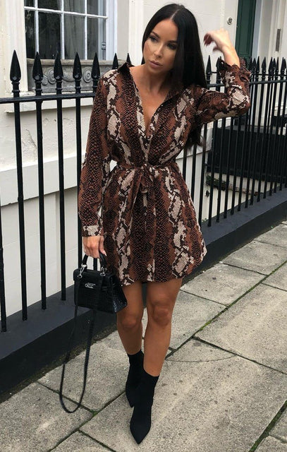 Brown Animal Snake Print Silk Shirt Dress - Bobbie