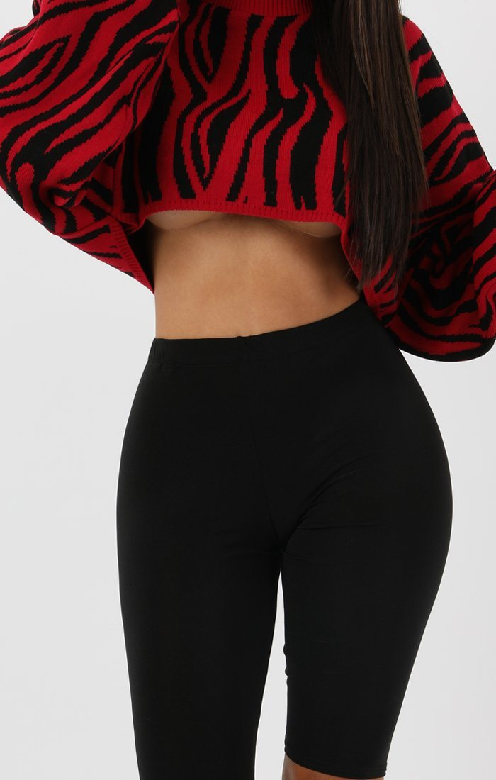 Red Animal Zebra Print Long Sleeve Crop Jumper - Sienna