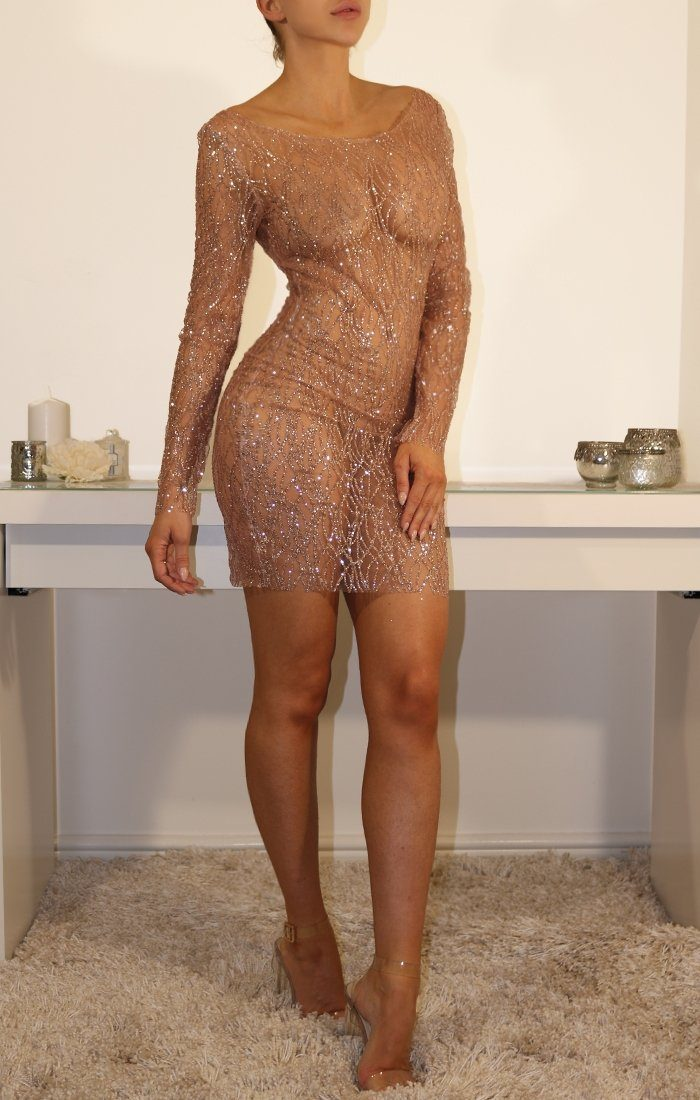 Rose Glitter Mesh Bodycon Mini Dress