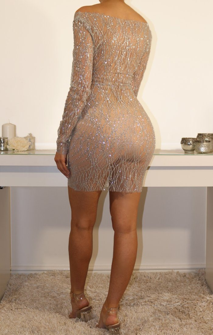 Silver Glitter Mesh Bodycon Mini Dress
