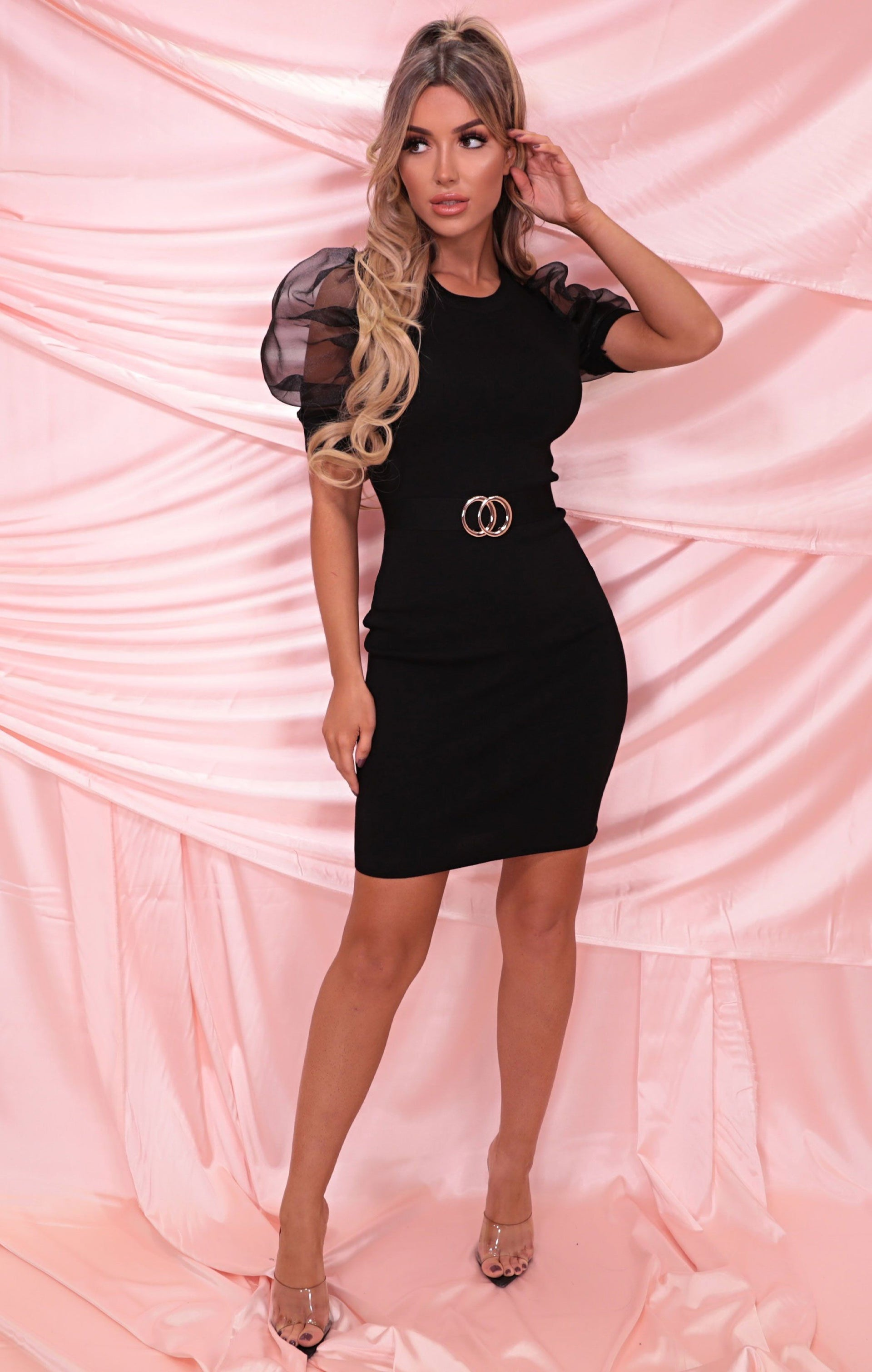 Black Organza Sleeve Ribbed Belted Bodycon Mini Dress - Kaitlin