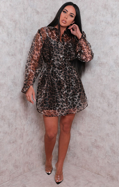 Brown Leopard Print Organza Mini Dress - Sasha