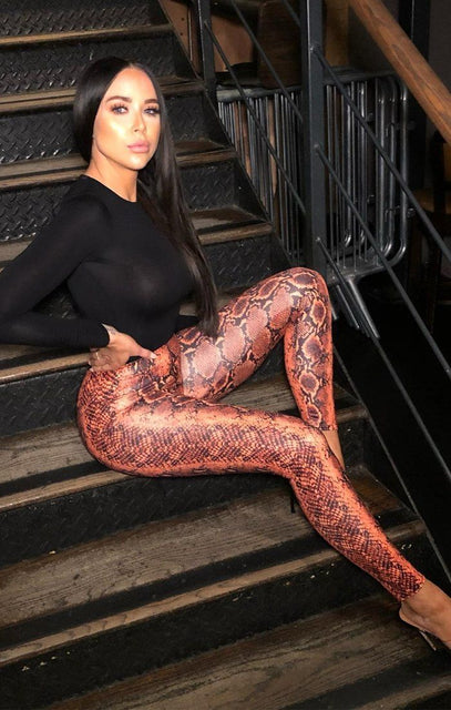 Orange Snake Print PU Leggings - Pip