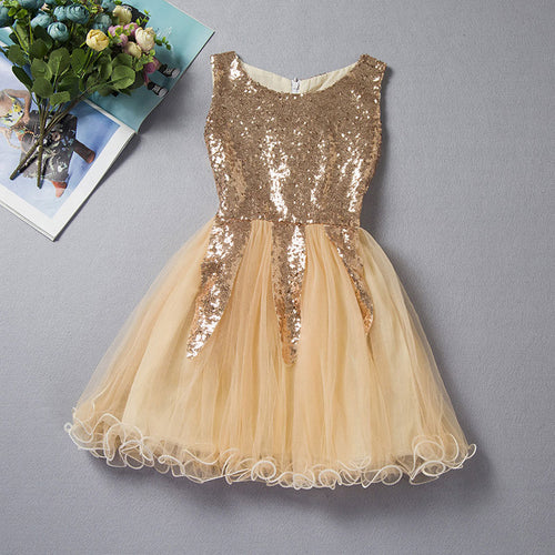 Fancy Princess Ball Gown