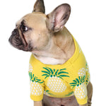 FineApple Sweater