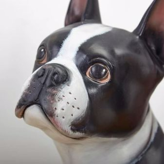 Close up image of a Boston Terrier statue with amazing lifelike expression