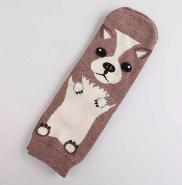 Image of a single sock with a cute Chihuahua design