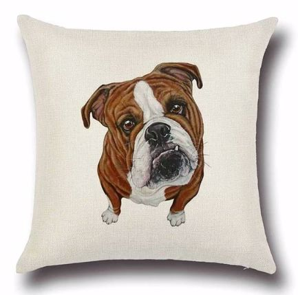 Image of a cushion cover with a curious looking english bulldog print