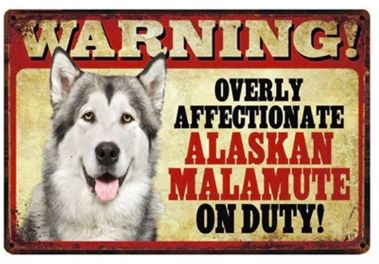 Image of a tin sign board with an Alaskan Malamute and funny caption which says Warning overly affectionate Alaskan Malamute on duty