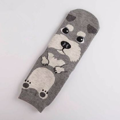 Image of a single sock with a cute Schnauzer print