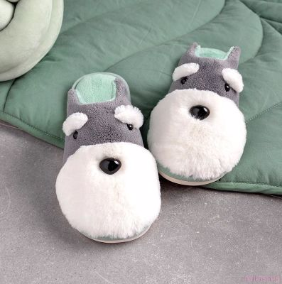Front view of two cute Schnauzer slippers