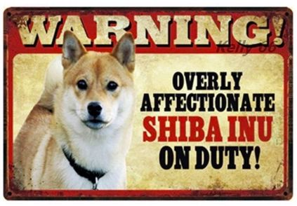 Image of a tin poster with a Shiba Inu and a funny caption which says 'Warning overly affectionate Shiba Inu on duty'