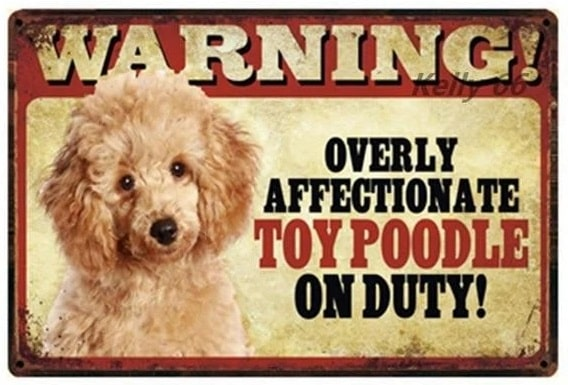Image of a sign board tin poster with a Toy Poodle and text which says 'Warning overly affectionate Toy Poodle on duty'