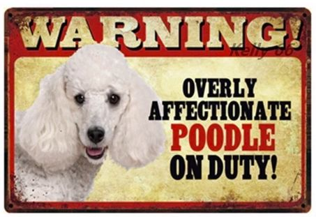 Image of a tin poster with a white poodle and funny text which says 'Warning overly affectionate poodle on duty'
