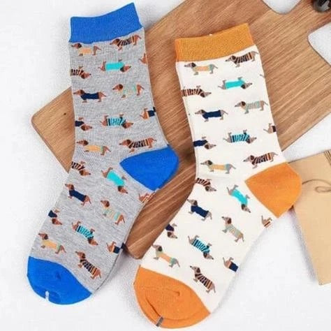 Image of two pair of socks in blue and orange color with cute dachshund dog print