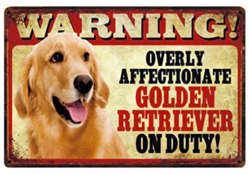 Image of a tin poster with a similar Golden Retriever and text which says 'Warning overly affectionate Golden Retriever on duty'