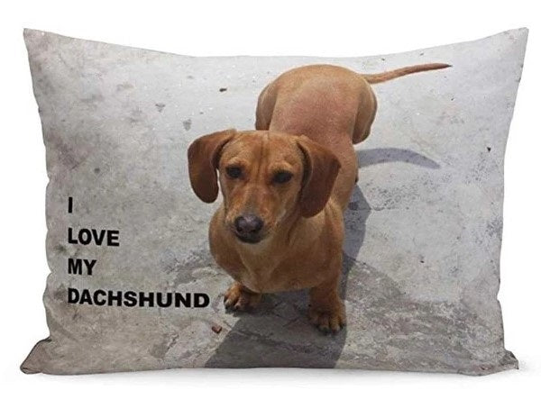 Image of a cutest queen size large rectangular dachshund cushion cover with a text saying 'I Love My Dachshund', made of 80% Polyester / 20% Cotton