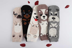 Chihuahua Love Womens Cotton SocksSocks