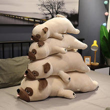 Load image into Gallery viewer, Image of four Pug stuffed animals soft plush toys of diferent sizes lying on the bed