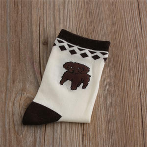 Embroidered Boston Terrier Cotton SocksSocksPoodle