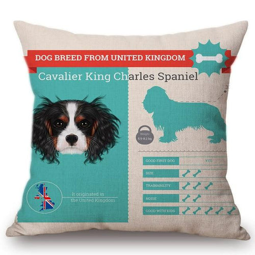 Know Your Cavalier King Charles Spaniel Cushion Cover - Series 1Home DecorOne SizeCavalier King Charles Spaniel