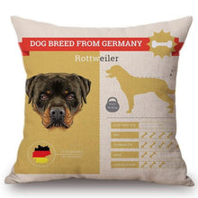 Load image into Gallery viewer, Know Your Rottweiler Cushion Cover - Series 1Home DecorOne SizeRottweiler